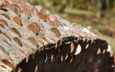 Why is There Money in Trees in Dovedale?