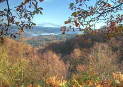 View from Hawksmoor