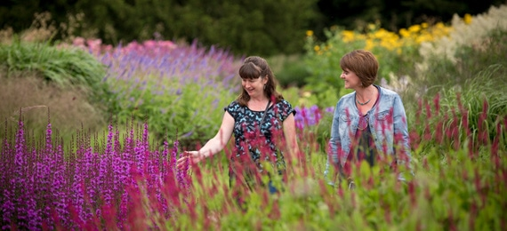 Trentham Gardens Fairy Trail