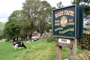 Blaze Farm - Days out with the kids