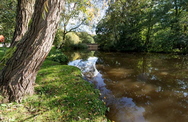 Streetview Churnet River